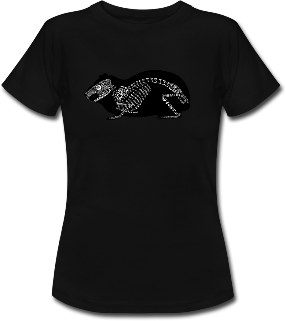 Shirt with guinea pig skeleton and medical term of the bones for vets and medical or veterinarian students - Word Anatomy